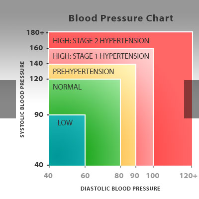 p lab report blood pressure pulse during exercise • use blood pressure readings and pulse to infer changes in cardiac output and peripheral vascular resistance with exercise • correlate the fitness level of individuals with amount of daily exercise.